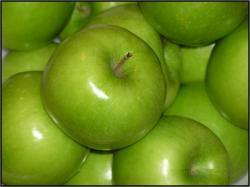 سیب گرانی اسمیت دیررس از ارقام تولیدی نهالستان  شاهرود البرز